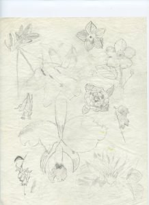 Flowers, 1987