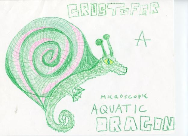 Crustofer, a Microscopic Aquatic Dragon